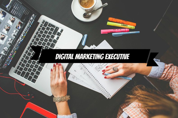 Digital Marketing Executive là gì