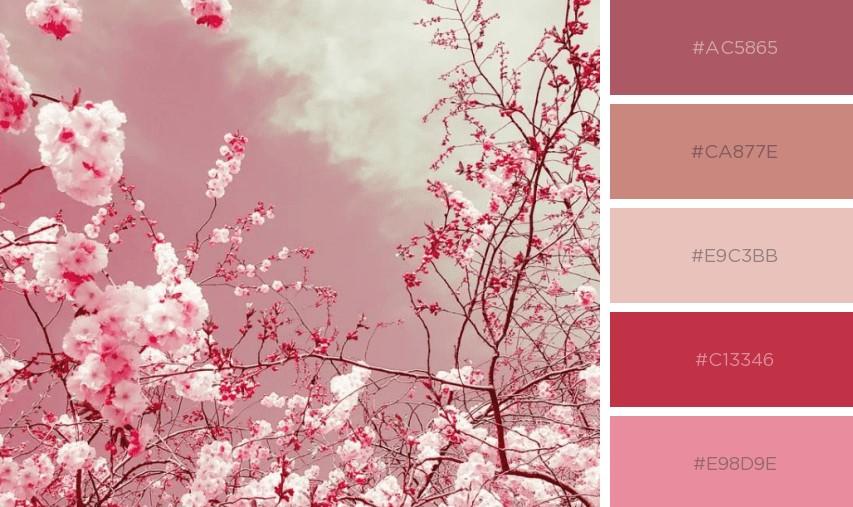 bảng màu Pastel 2