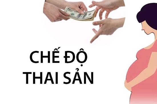 che-do-thai-san-2019.jpg